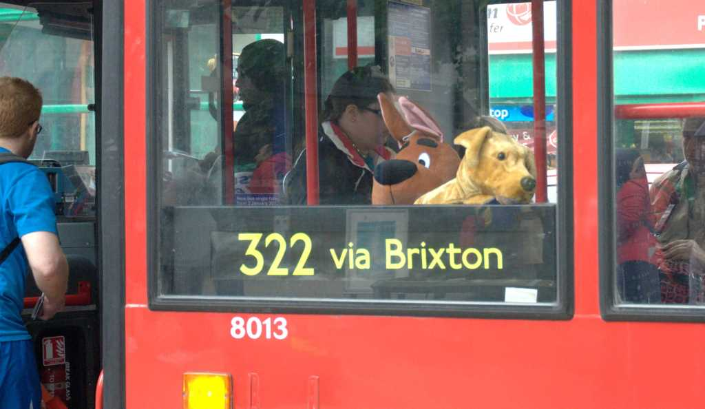 Toy animals on bus